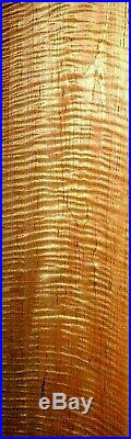 Awesome Board! Heavy Duty Figure! Super Quilt Tiger Curly Tiger Maple Lumber